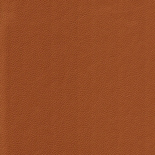 Sorensen Leather Cognac